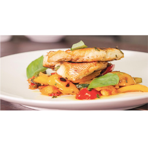PAN SEARED SNAPPER WITH RATATOUILLE